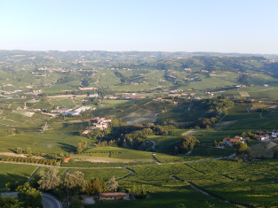 COLLABO ITALIA イメージ画像